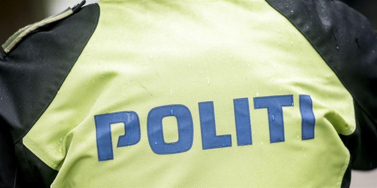 Hundelufter kastede sten mod bil: Ved du noget? Avisen.dk