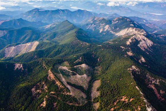 Luftbillede af bjerkæde med tyk skov