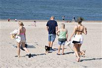 børn og voksne på en strand