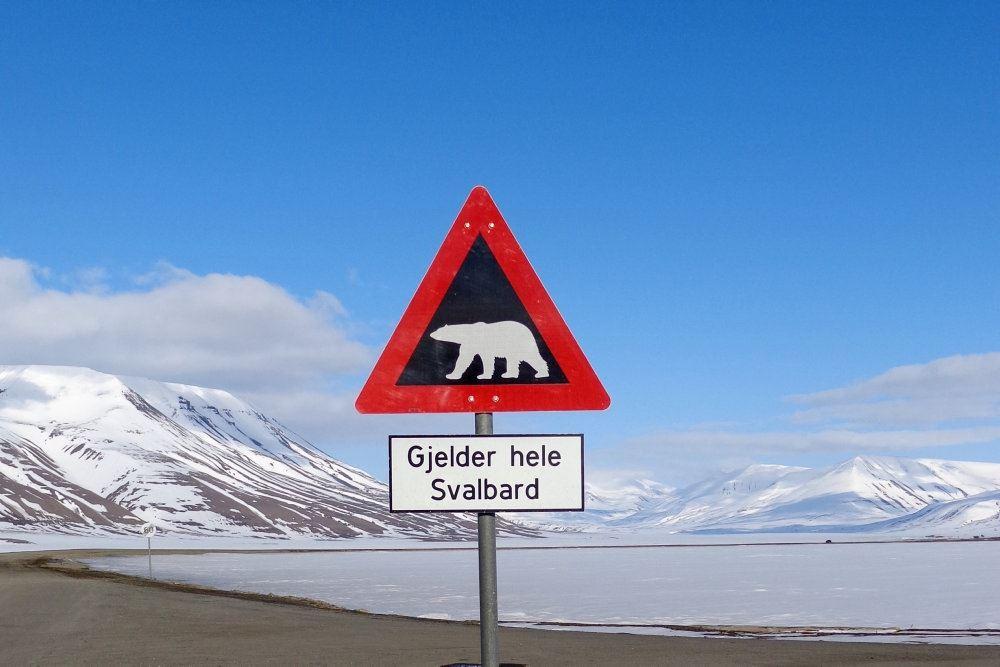 Skilt med isbjørn