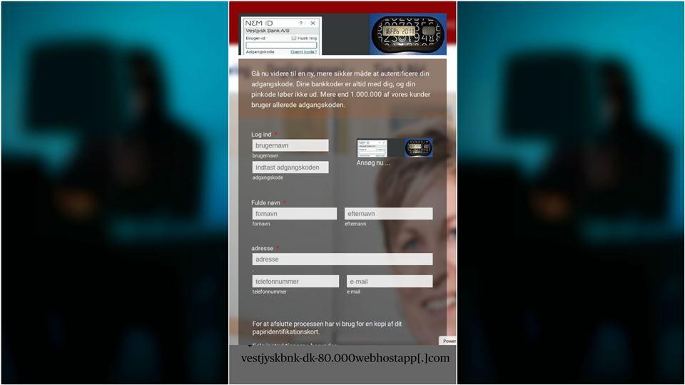 screenshot af den falske hjemmeside