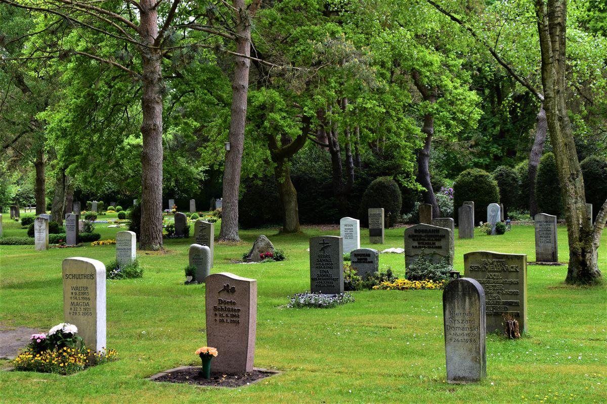 En kirkegård med grønt græs, gravstene og smukke træer