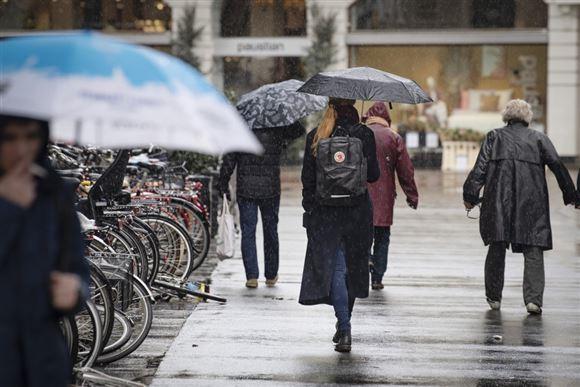 Folk med paraplyer og vintertøj går med ryggen til ned af en gade.