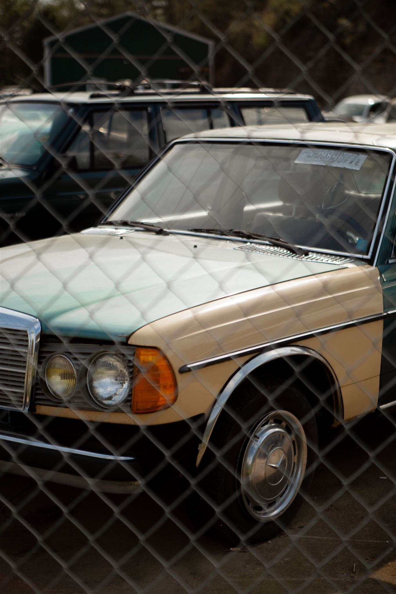 En gammel gul Mercedes bag et trådhegn
