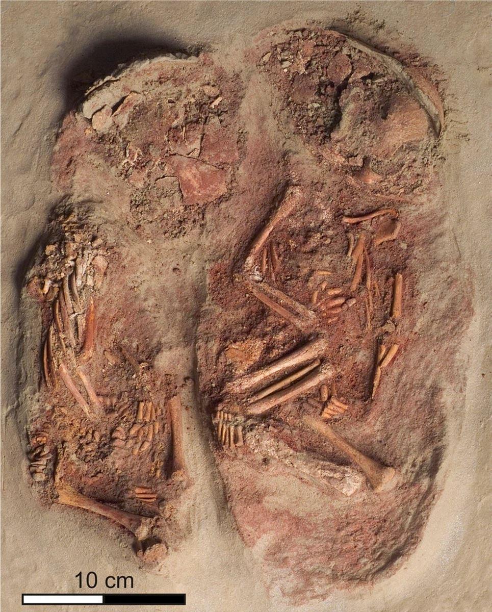 Nogle knogler med rød farve i en åben grav