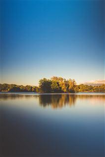 En sø med træer