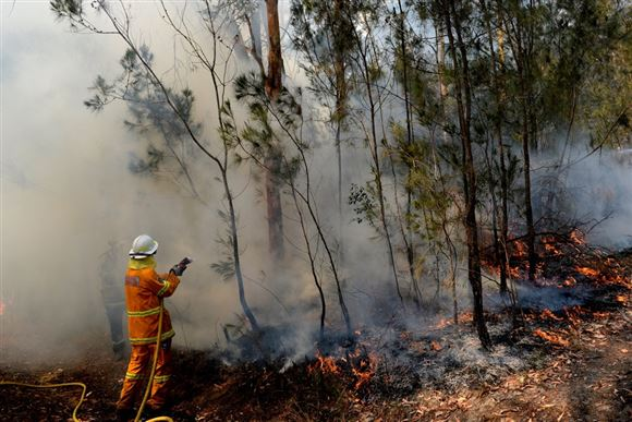 Brandmand kæmper med skovbrand