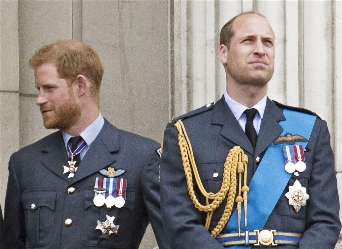 Prins Harry og prins William kigger hver sin vej