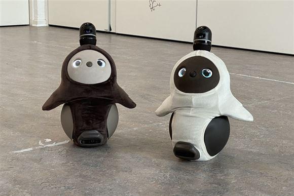 to små hvis-sorte robotter står på gulv