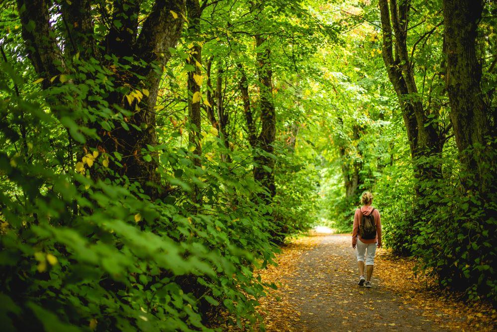 Kvinde med rygsæk går på skovsti