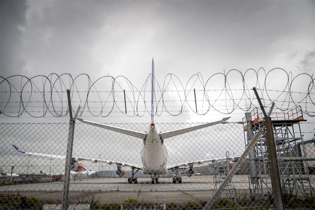et fly står på en landingsbane