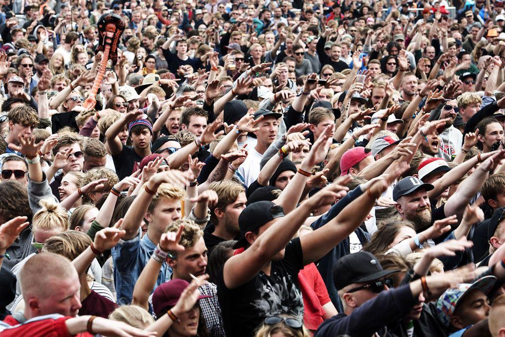 Folkemængde til festival