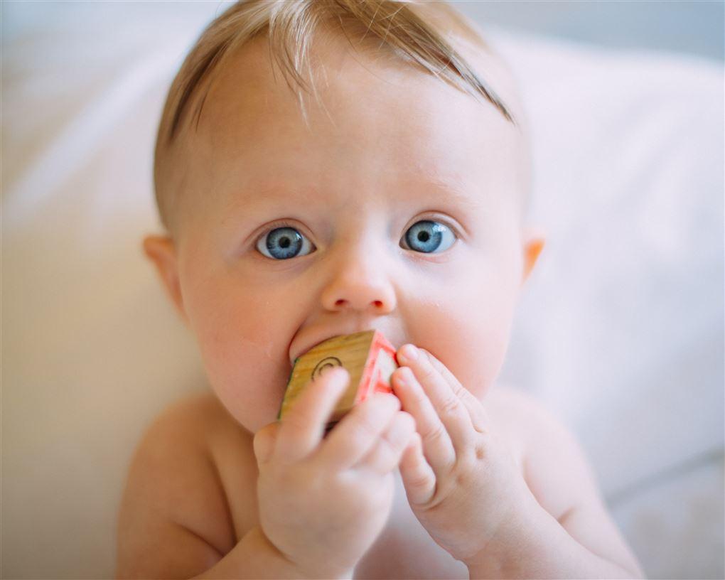 En baby med store blå øjne med en legeklods i munden mens han eller hun kigger direkte ind i kameraet.