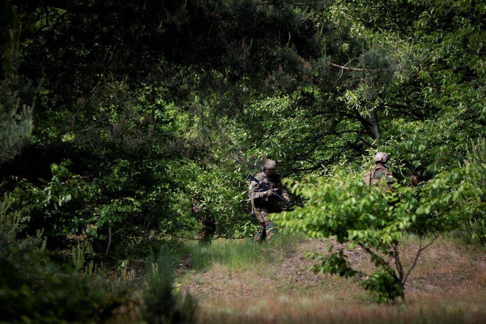 Soldater afsøger en grøn skov