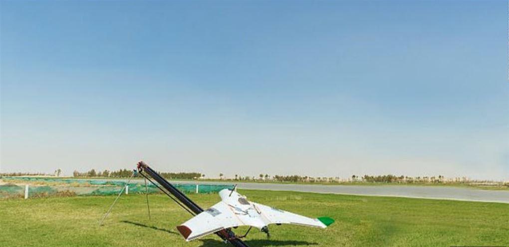 En lille drone på græsset