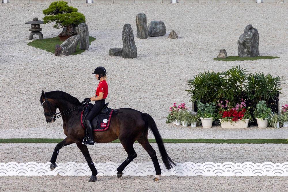 en hest med en rytter i rød jakke