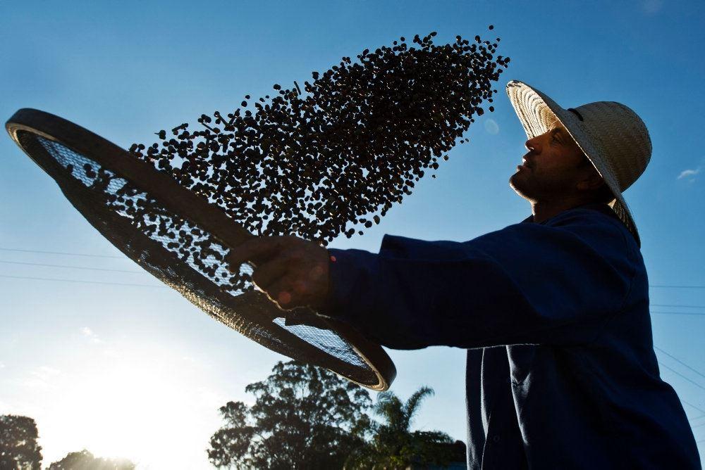 en kaffebonde filtrerer kaffebønner
