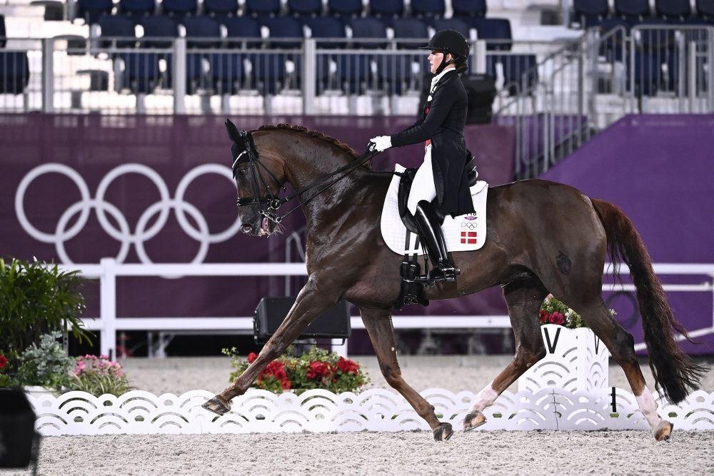 Hest og rytter på banen ved OL