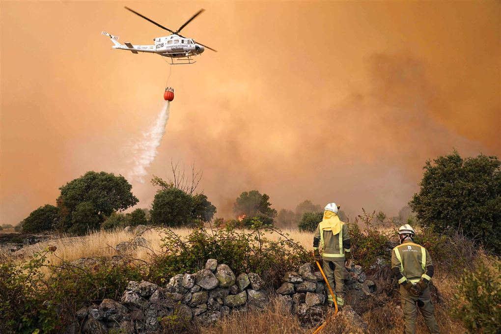 helikopter forsøger at slukke naturbrand