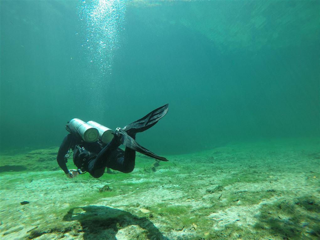 En dykker ved havbunden