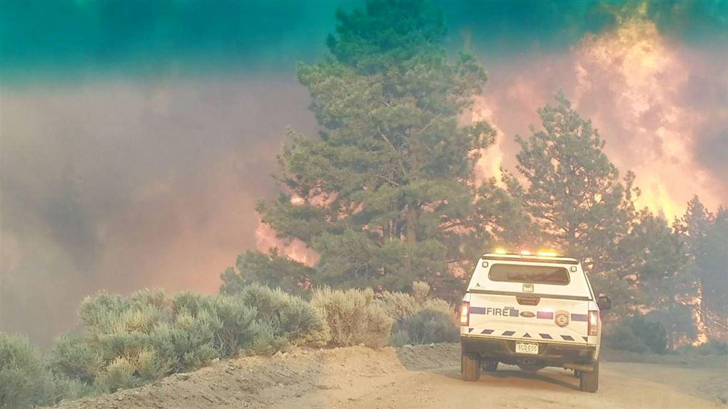 bil holder foran brændende skovområde