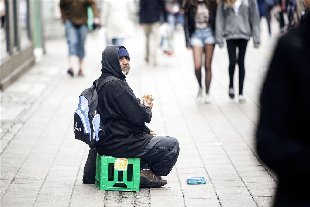 tigger på gaden i københavn